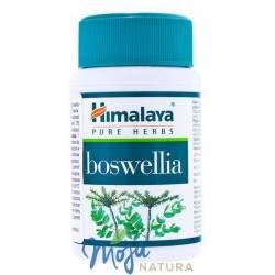 BOSWELIA 60kaps HIMALAYA