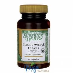 Bladderwrack extract (Morszczyn pęcherzykowaty) 60kaps SWANSON