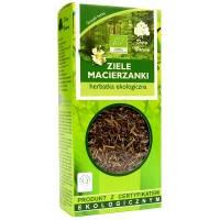 Macierzanka ziele herbatka ekologiczna 25g DARY NATURY