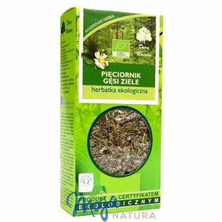 Pięciornik gęsi ziele herbatka ekologiczna 50g DARY NATURY