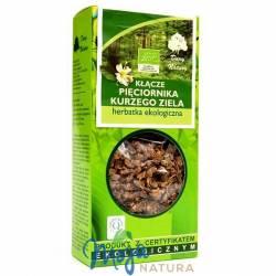 Pięciornik kurze ziele kłącze herbatka ekologiczna 100g DARY NATURY
