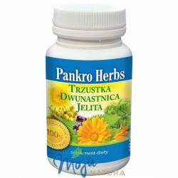 Pankro Herbs 60kaps INWENT HERBS